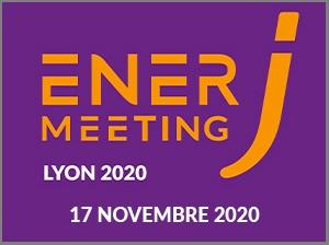 ENERJ-MEETING Lyon - 17 novembre 2020 - Journée ...